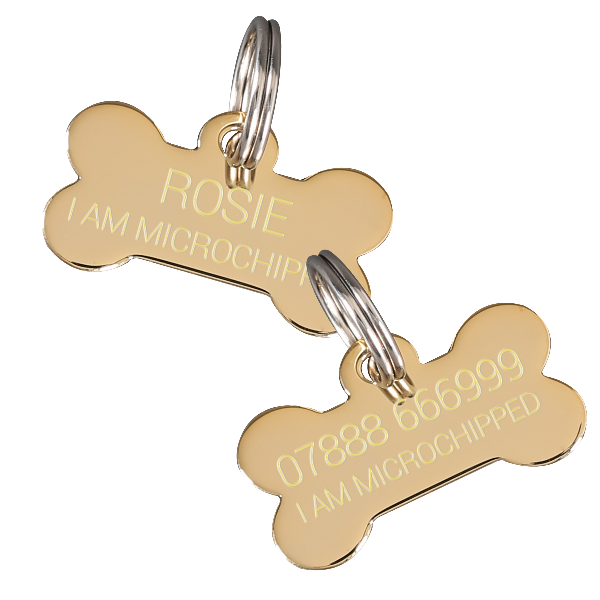 Luxury Gold Silver Pet Id Tags Paws