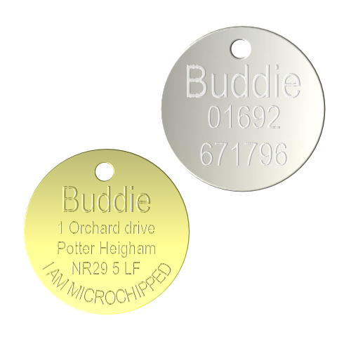 Polished Brass and Chrome Pet Tags