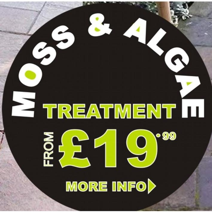 MOSS & ALGAE TREATMENT