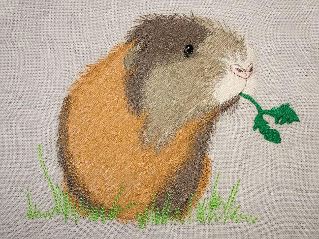 Doodle threads maurice the guinea pig