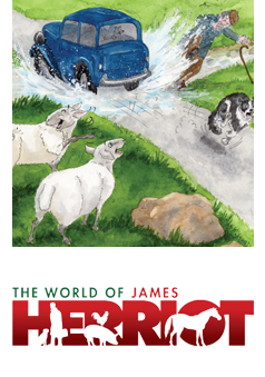 World of James Herriot