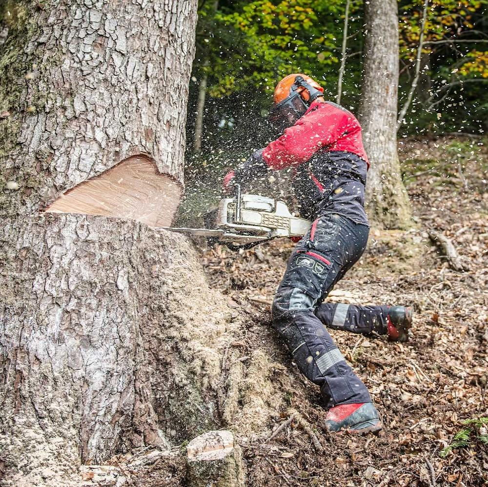 Chainsaw Protection Range