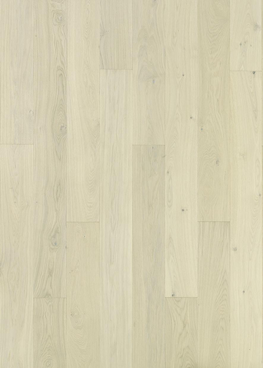 TIMBERWISE OAK SELECT CREAM