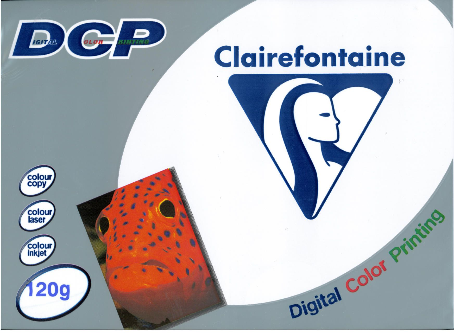 PAPER CLAIREFONTAINE 120GR A4 250S WHITE