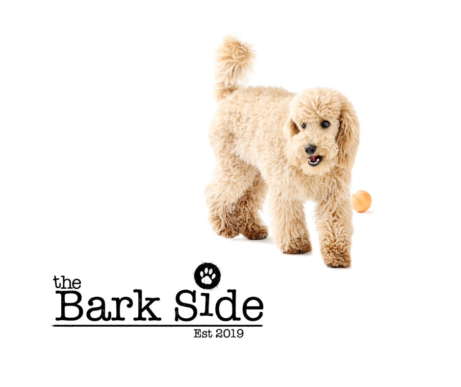 Welcome To The Bark Side's New Website