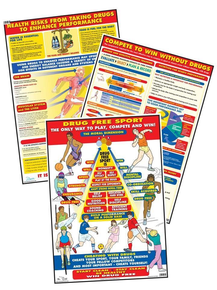 Sport Education Charts - Set of 3
