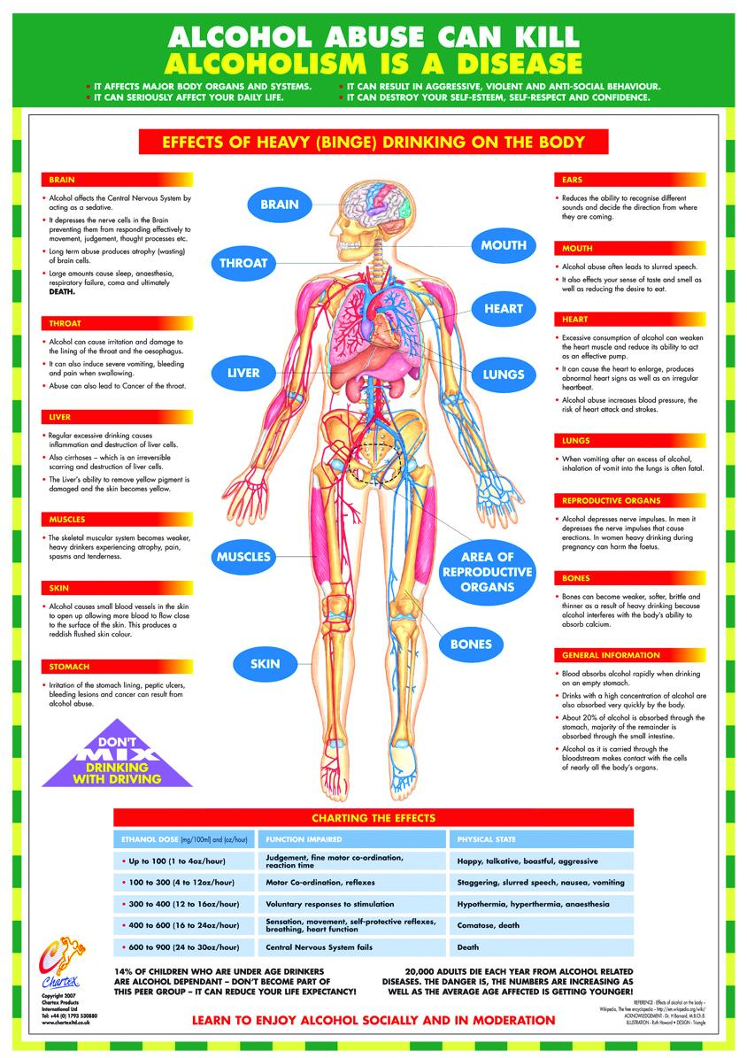 Alcohol Awareness Chart