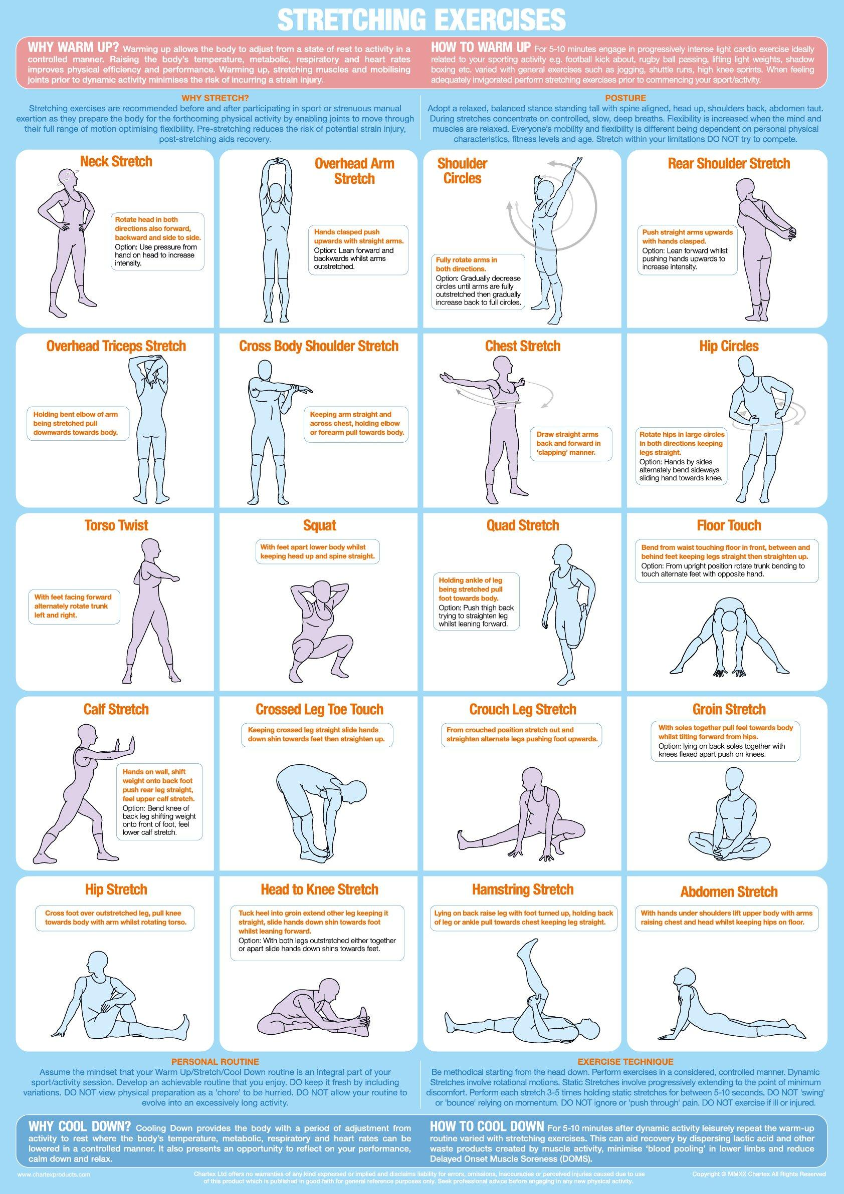 Stretching Exercise Chart