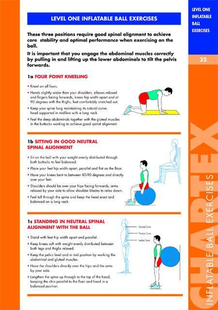 Core Muscle Exercise Manual