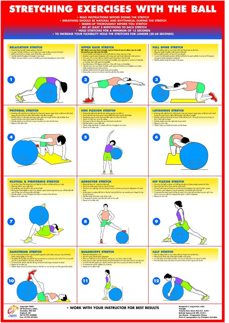 Gym Ball Stretching Exercises