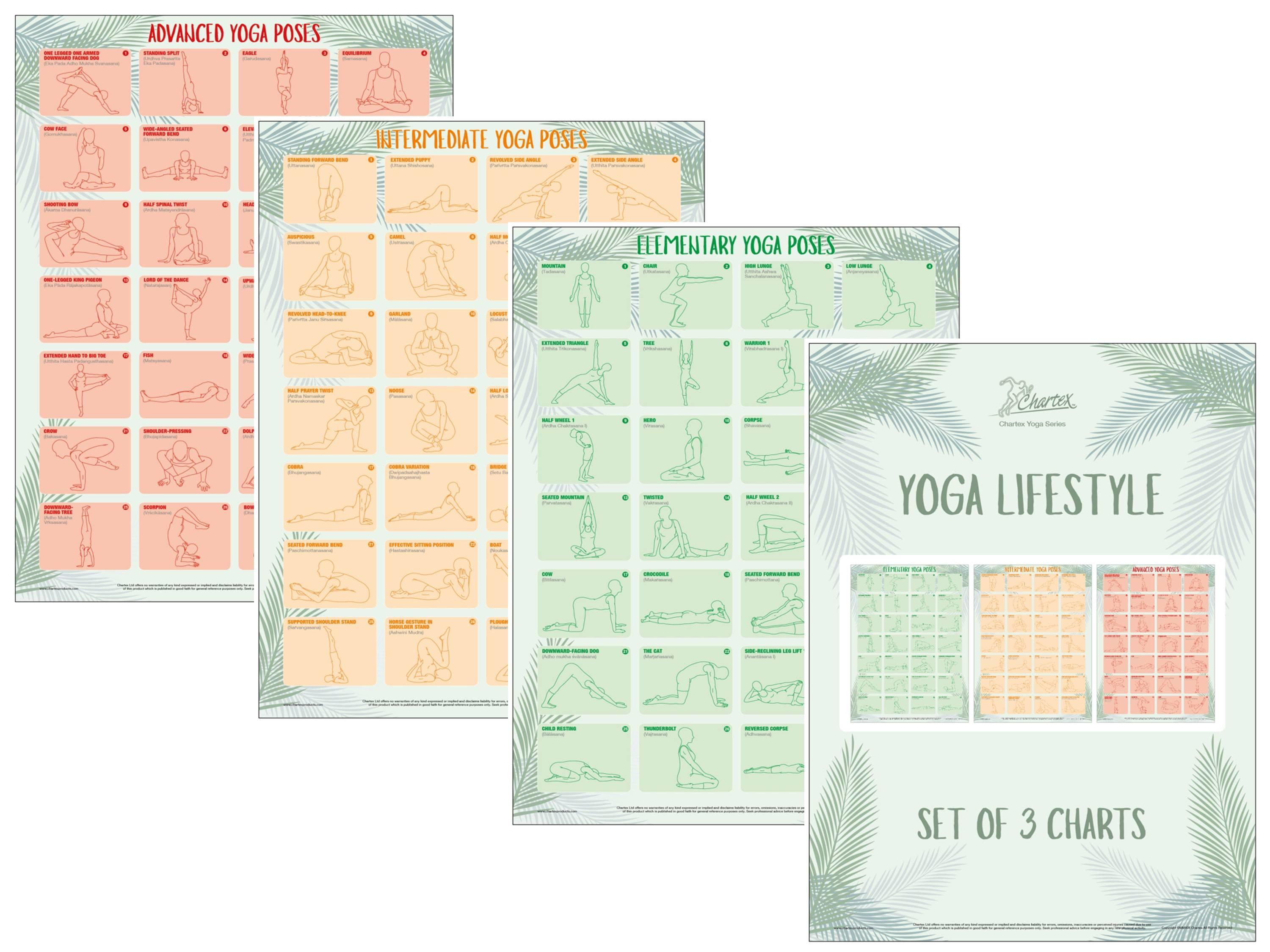 Yoga charts illustrating a traditional range of poses and positions.
