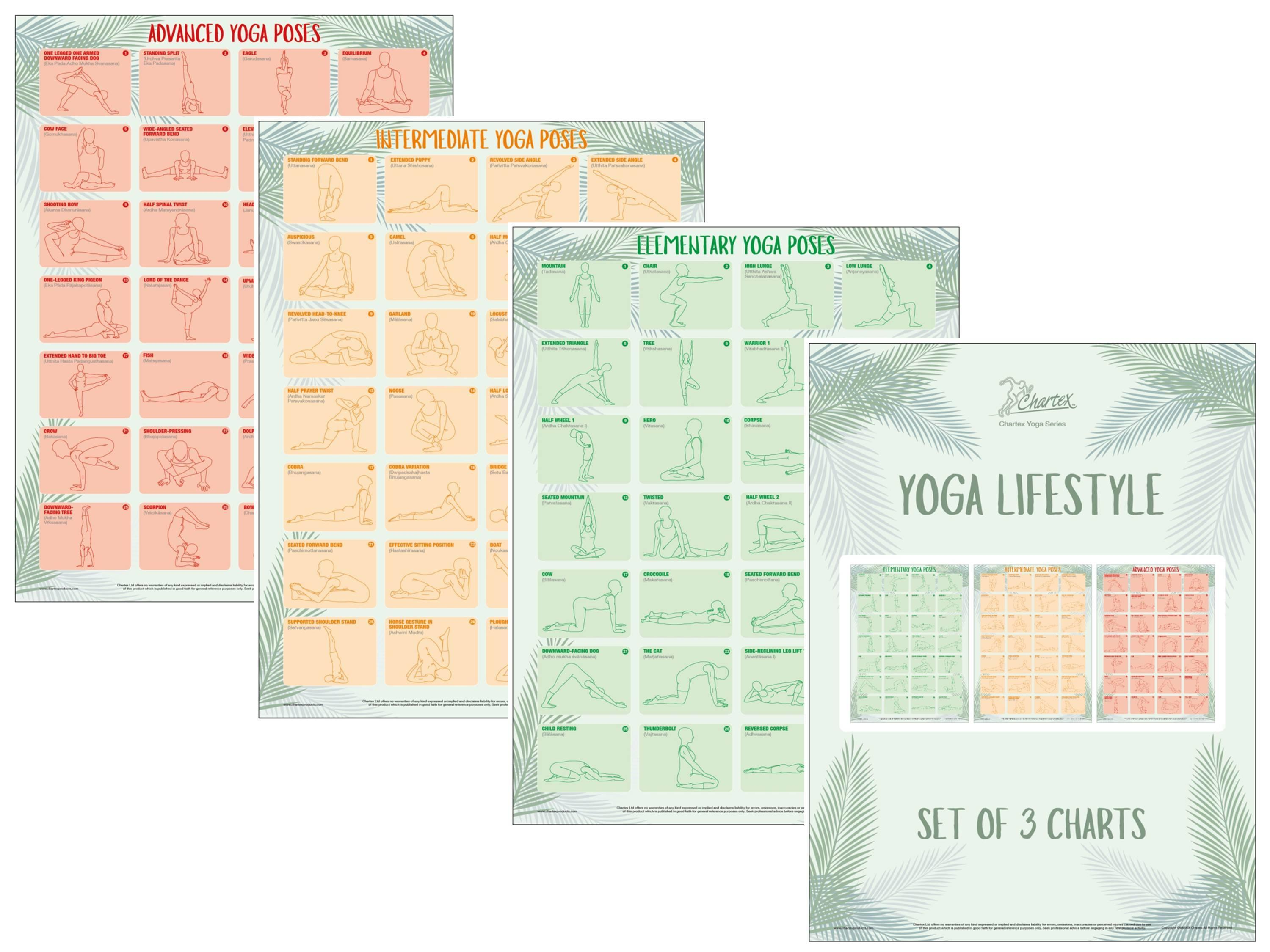 Yoga Poses And Exercises Set of 3 Instructional Charts