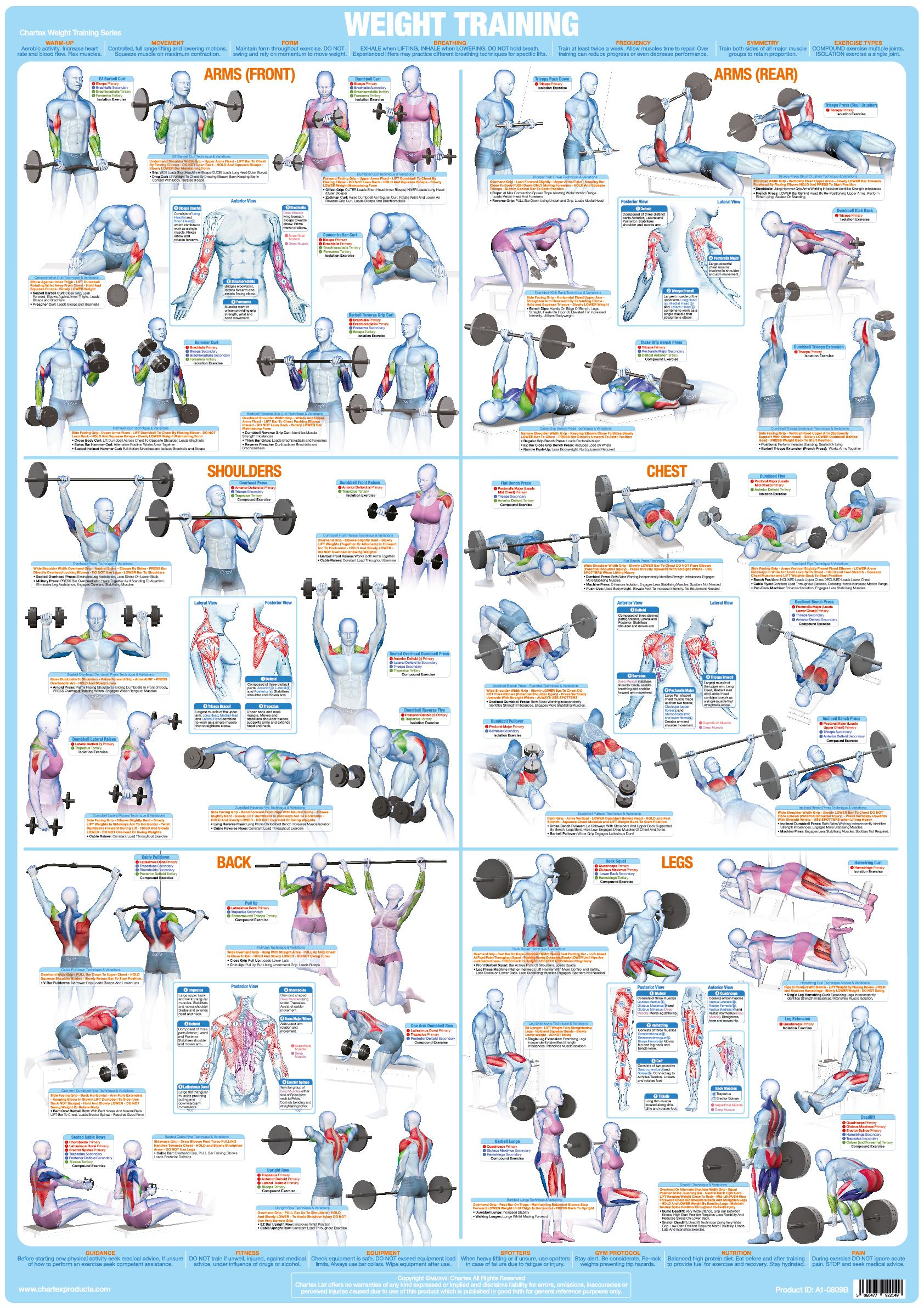 Bodybuilding Weight Training Poster