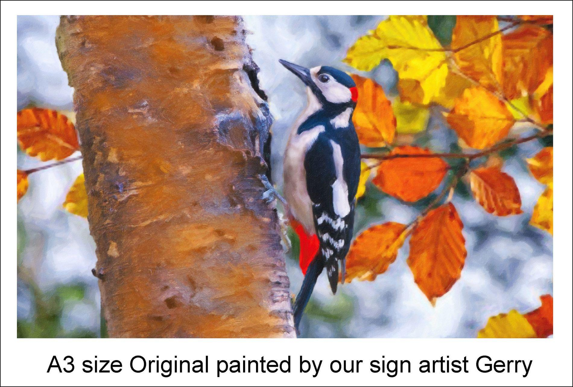 original A3 woodpecker painting used on house sign