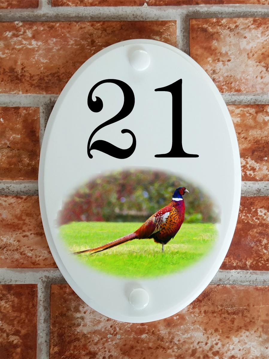 Male Pheasant bird house number plate