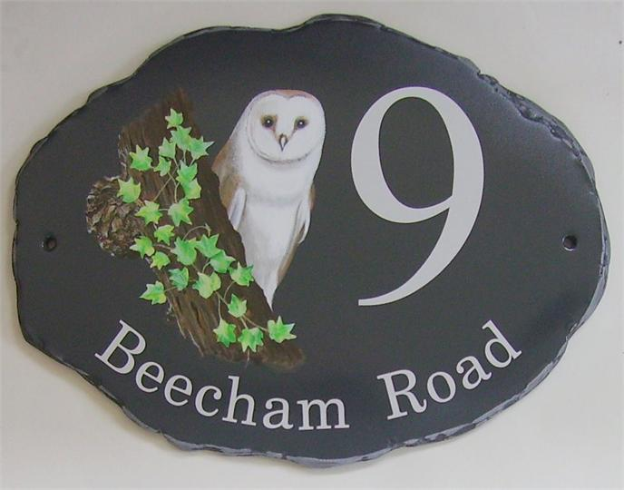 Barn owl behind tree stump sign