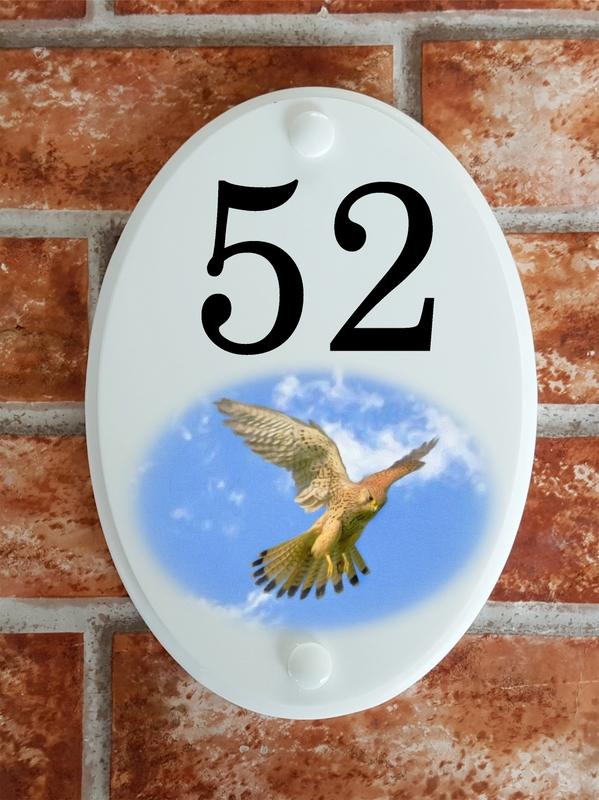 kestrel bird house number plate