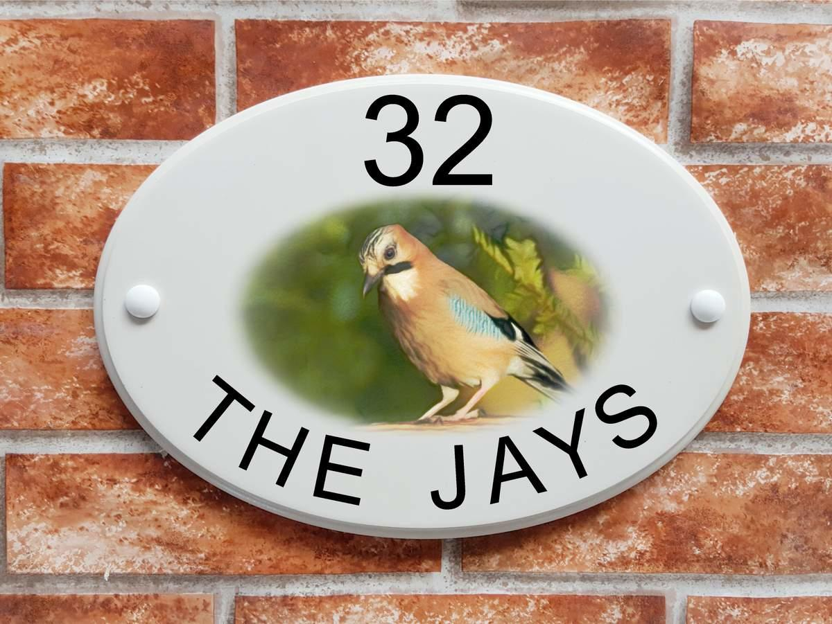 Jay bird house sign (Code 071)