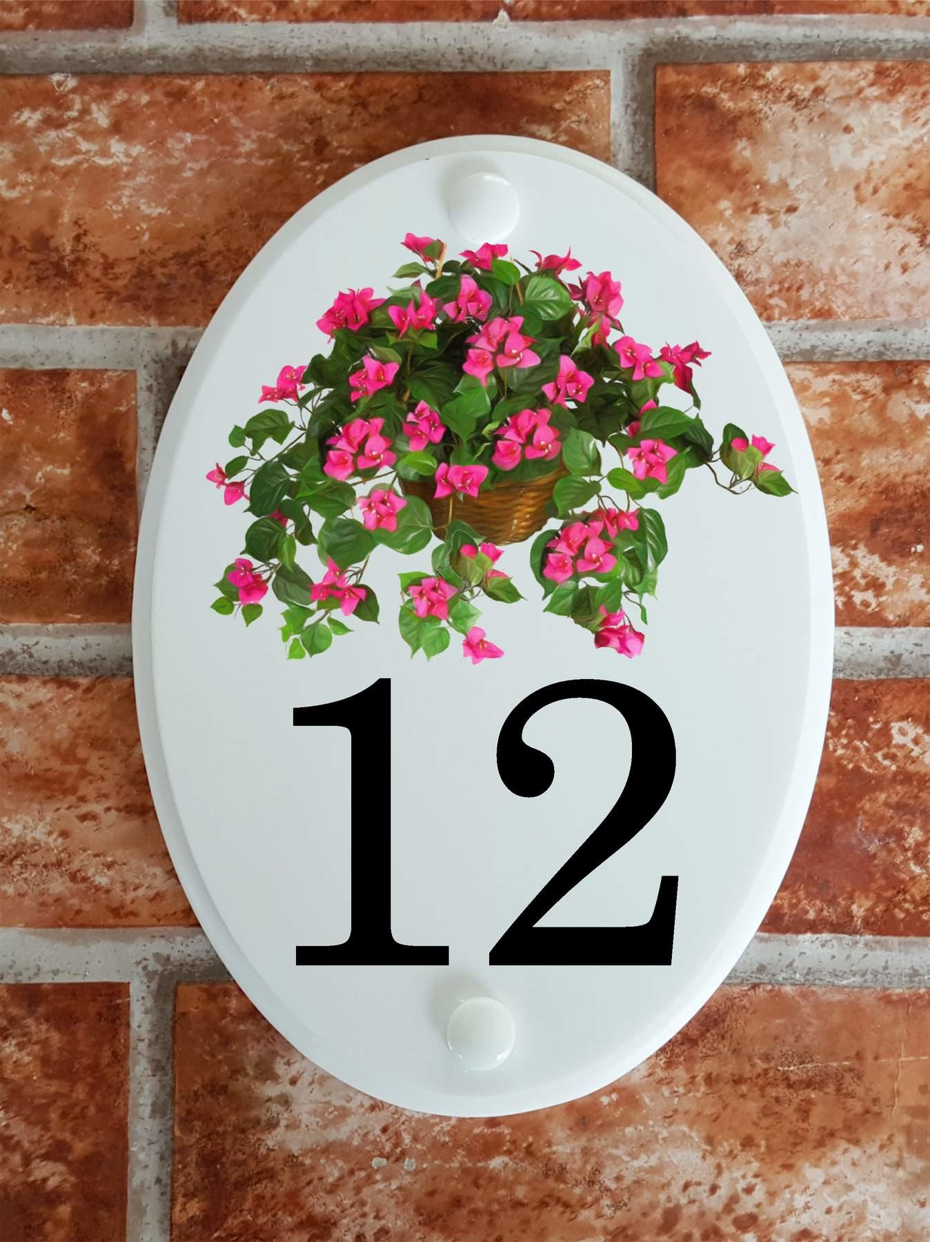 house number plaque with Bougainvillea floral display