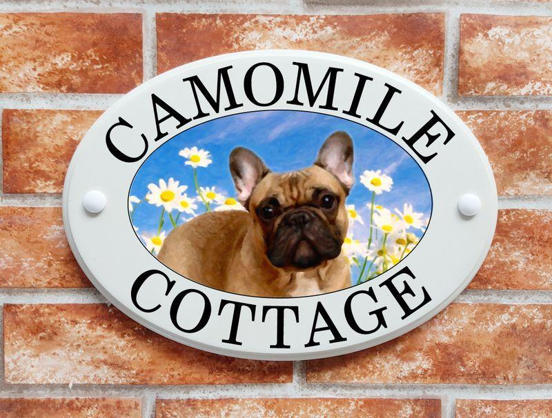 French Bulldog (code 039)