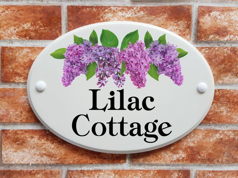 Lilac Cottage on white background
