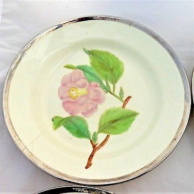 Antique Pearlware Botanical Plates Set Six Hand Painted Silver Lustre Rim c 1810
