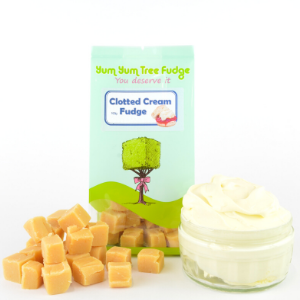 Clotted Cream Fudge 100g Yum Yum Tree Fudge