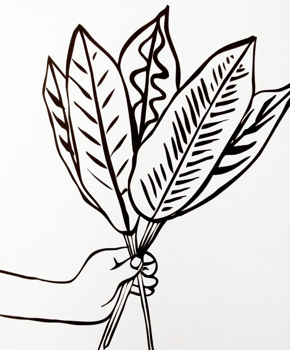 A not-yet-coloured-in page from W+P+P featuring a fist full of beautiful leaves