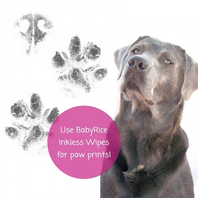 BabyRice inkless printing wipes are safe to use on pet paws too