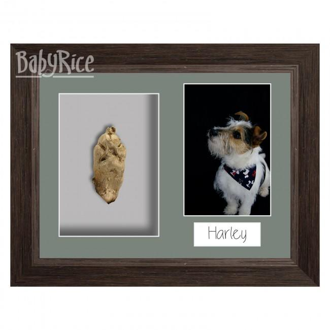 Framed paw cast
