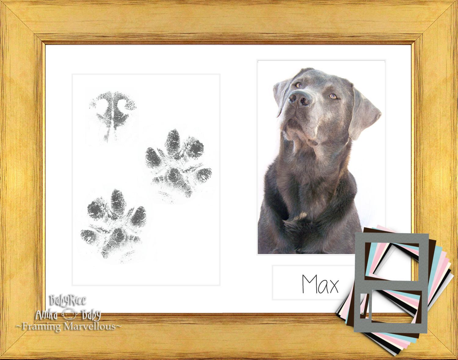 Dog Paw Print Kit with Gold Wood Frame White Photo Mount