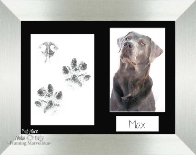 Pet Paw Prints Kit with Silver Wooden Frame Black Insert
