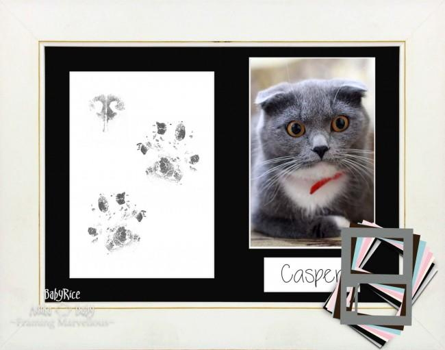 Cat Pet Paw Prints Kit with White Wash Frame- Choose Mount Colour