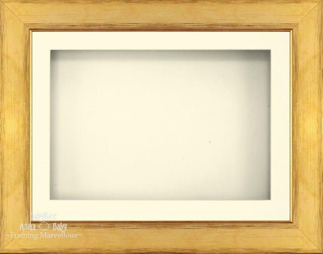 "11.5x8.5"" Gold 3D Deep Box Display Frame Cream Mount"