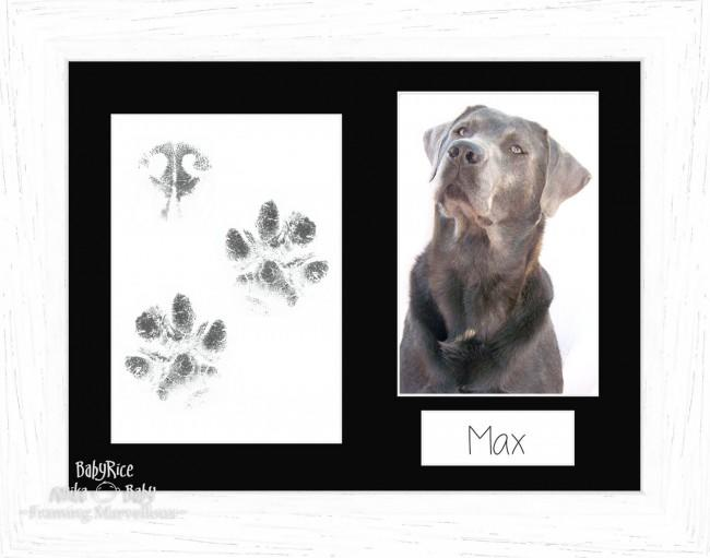 Pet Paw Prints Kit with White Frame, Black Mount