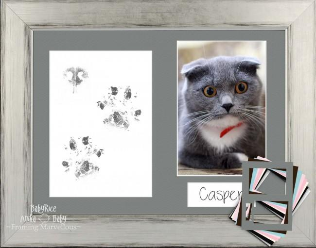 Cat Pet Paw Prints Kit with Silver Black Frame- Choose Mount Colour Gift Kittens