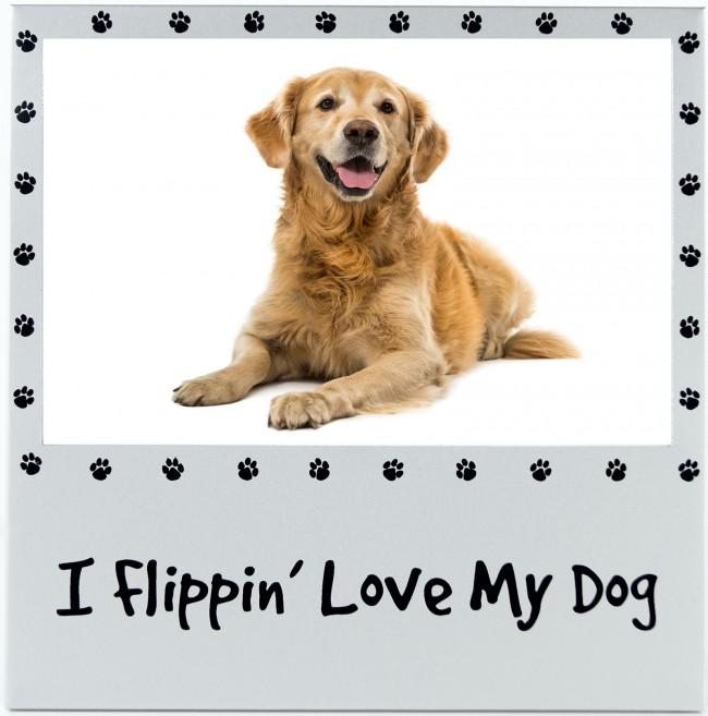 "I Flippin' Love My Dog 4x6"" Photo Picture Frame Silver Pet Gifts"
