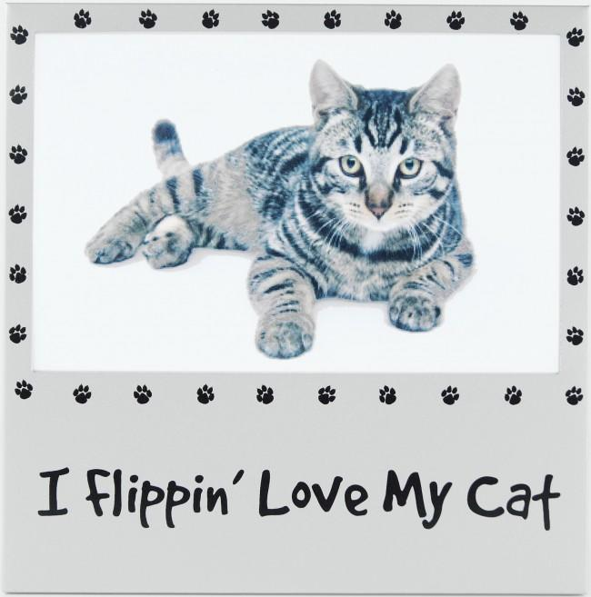 "I Flippin' Love My Cat 6x4"" Photo Picture Frame Silver Pet Gifts"