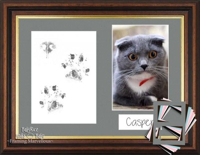 Cat Pet Paw Prints Kit with Mahogany Gold Trim Frame - Choose Mount Colour