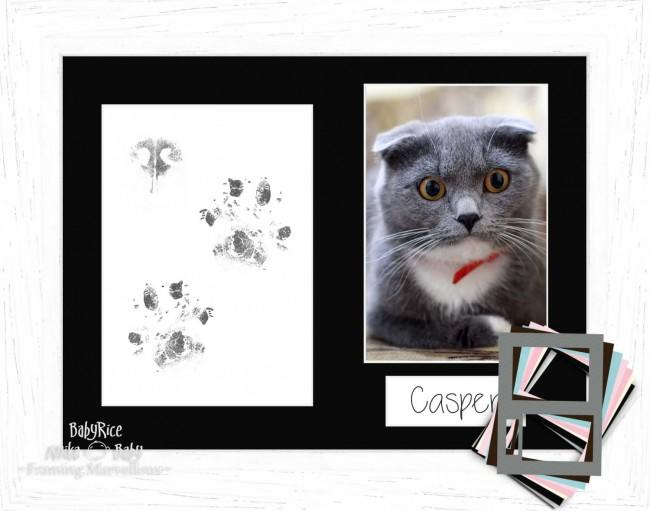 Cat Pet Paw Prints Kit with Coastal Woods White Frame - Choose Mount Colour