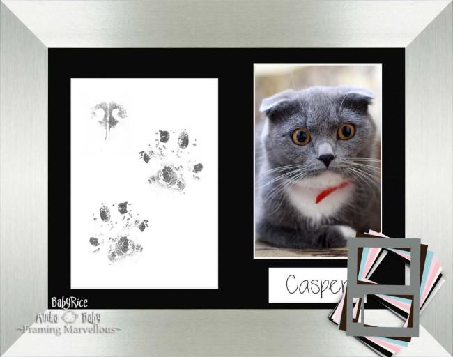 Cat Pet Paw Prints Kit with Brushed Silver Frame - Choose Mount Colour